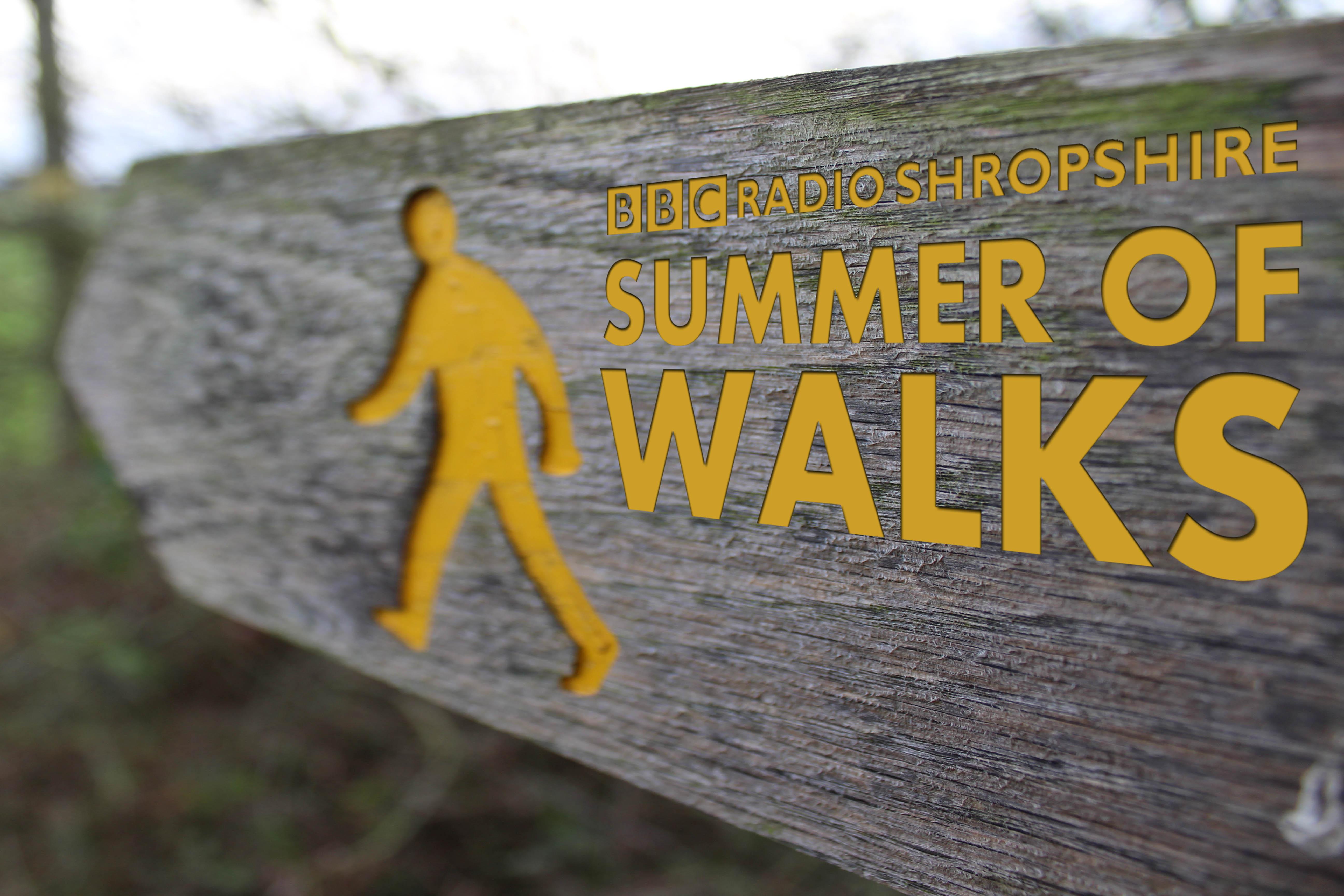 Summer of walks
